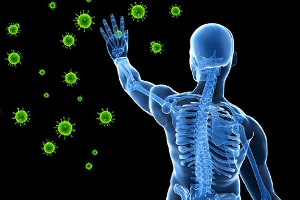 Immune-system-photo-1-1170x780